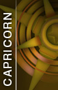 Capricorn 22 December - 20 January